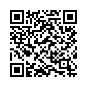 QR Code Wahlkampfauftakt